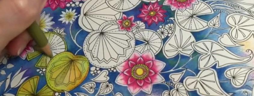 Felnőtt színező - ahogy Chris Cheng színezi